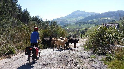 Rosamarina Lake Loop Ride - Sicily Cycling