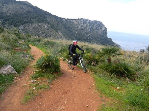 Bike Tour & BIke Hire Palermo