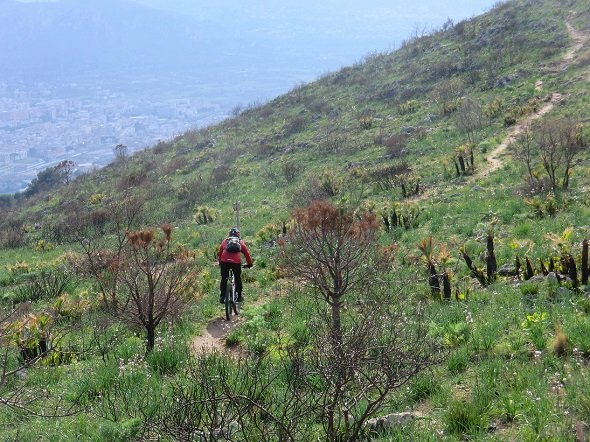 bike tour bike rental sicily Palermo (9)